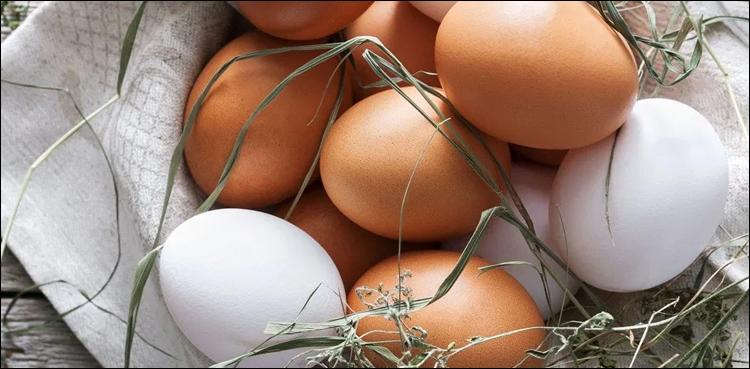 کیا بھورے رنگ کا انڈا سفید انڈے سے بہتر ہے؟